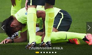 制作搜狐2014巴西世界杯专题幻灯片