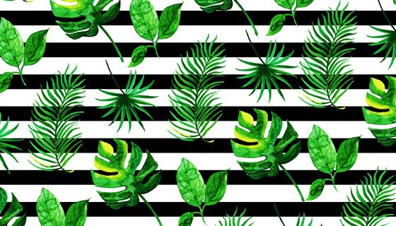 水彩风格热带树叶矢量素材(EPS/PNG)