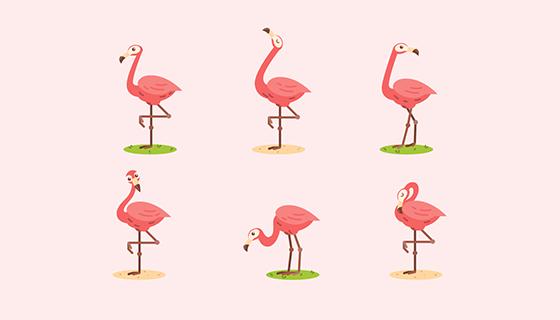 6种不同姿势的火烈鸟矢量素材(EPS/AI/PNG)