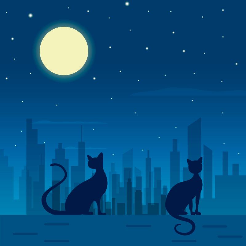 城市夜空下的猫矢量素材(EPS/AI)