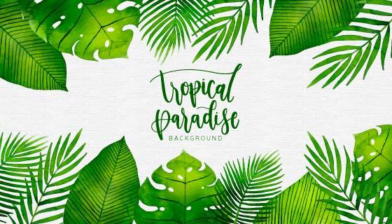 水彩热带植物背景矢量素材(EPS/AI/PNG)