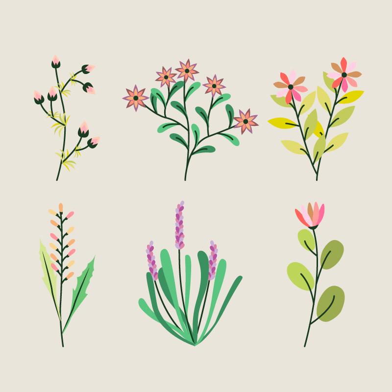 优雅的花卉集合矢量素材(EPS/AI/免扣PNG)