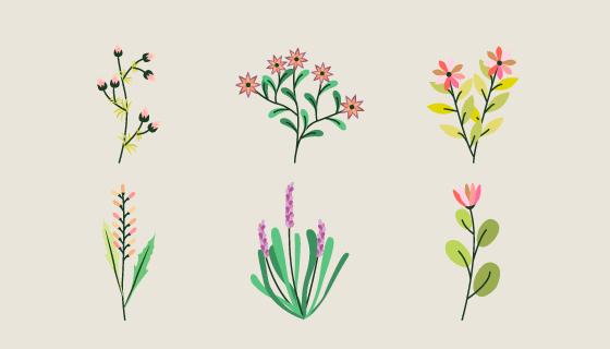 优雅的花卉集合矢量素材(EPS/AI/PNG)