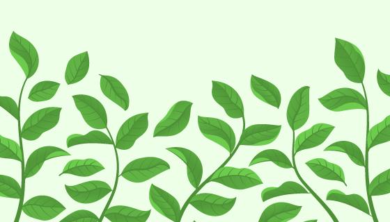 绿色清新茶叶背景矢量素材(EPS/AI/PNG)