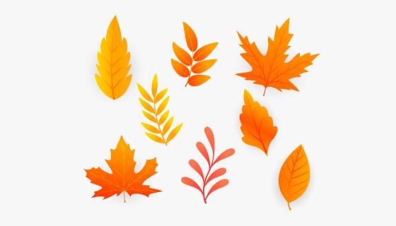 橙色的秋叶矢量素材(EPS)