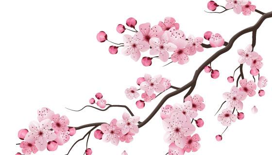 漂亮水彩樱花矢量素材(EPS/PNG)
