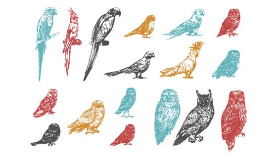 手绘多彩的鸟矢量素材(EPS/PNG)
