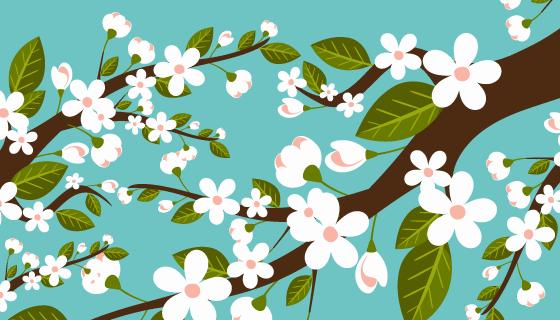 漂亮的白色樱花背景矢量素材(EPS/AI/PNG)