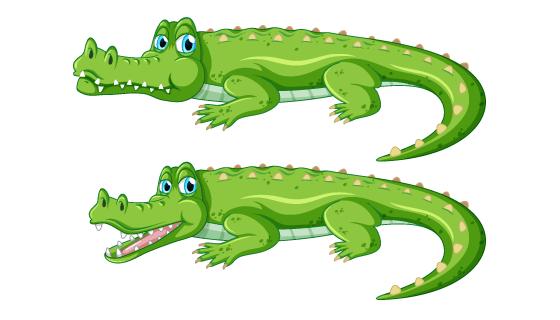 逼真的鳄鱼矢量素材(EPS/PNG)