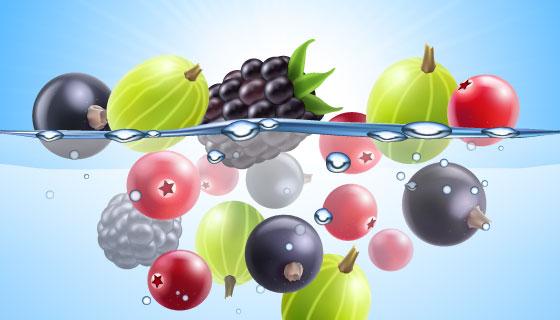 逼真多彩的水果矢量素材(EPS)