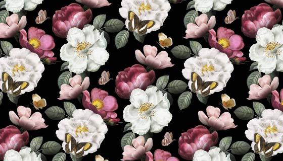 逼真的漂亮花卉背景矢量素材(EPS)