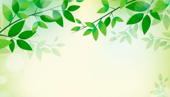 清新的绿色叶子背景矢量素材(EPS/AI)