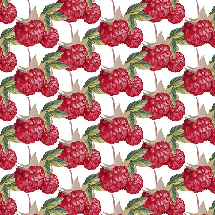 树莓图案背景矢量素材(EPS)