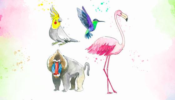 水彩风格热带动物矢量素材(AI/EPS/PNG)
