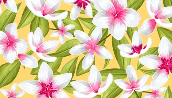 漂亮的热带花卉背景矢量素材(AI/EPS)