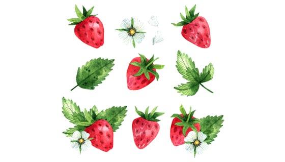水彩草莓背景矢量素材(AI/EPS/PNG)