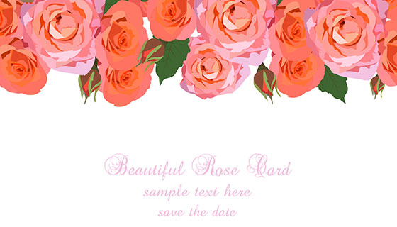 漂亮的红玫瑰背景矢量素材(EPS)