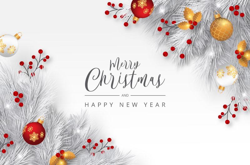 优雅的白色树枝圣诞节背景矢量素材(eps/png)