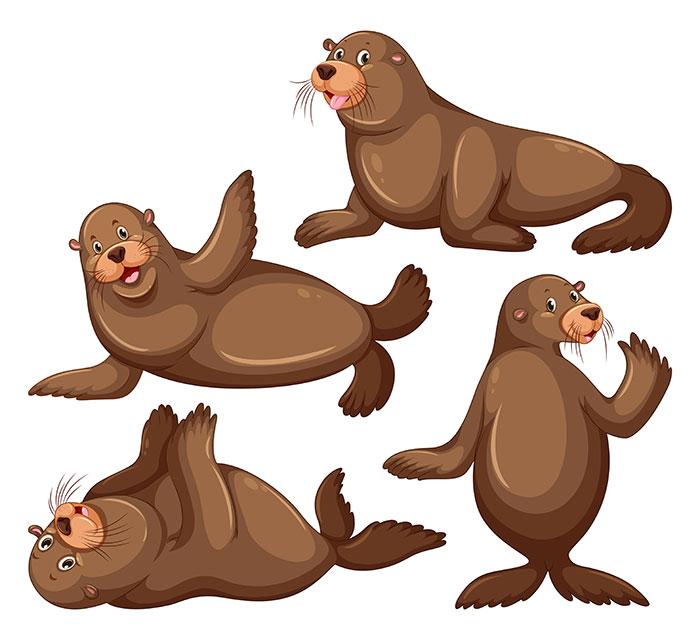 可爱的海狮矢量素材(EPS)
