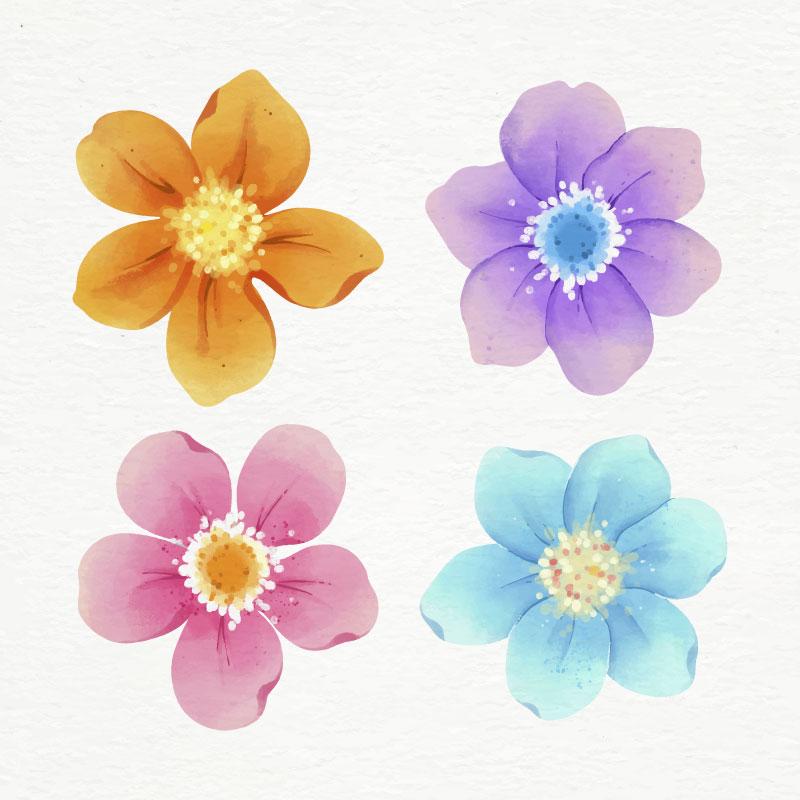 水彩风格花朵矢量素材(AI/EPS/免扣PNG)