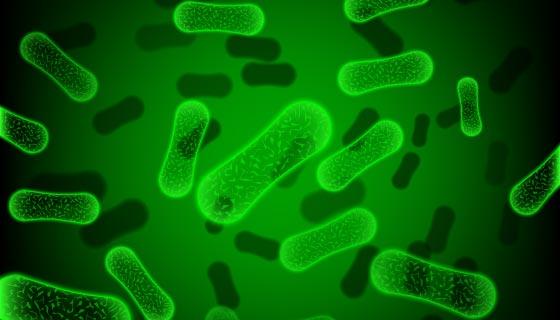 绿色杆状细菌矢量素材(EPS)