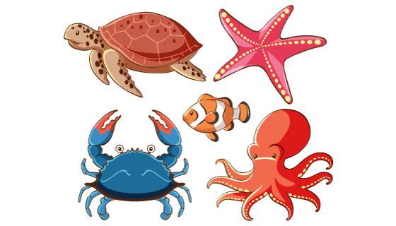 五种海洋动物矢量素材(EPS/PNG)