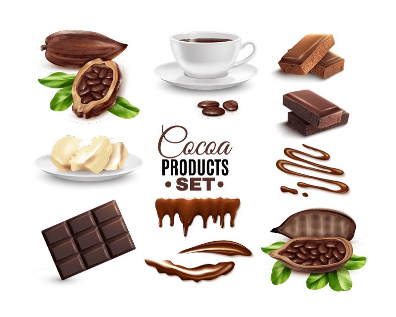 逼真美味的可可豆和巧克力矢量素材(EPS)
