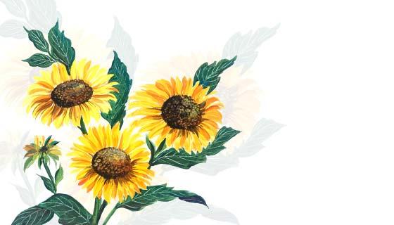 手绘向日葵花朵矢量素材(EPS)
