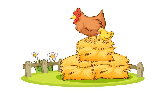 手绘草堆上的母鸡和小鸡矢量素材(EPS/PNG)