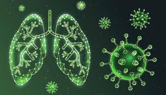 肺和冠状病毒概念设计矢量素材(AI/EPS)