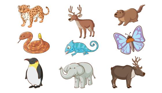 手绘风格的动物矢量素材(EPS/PNG)