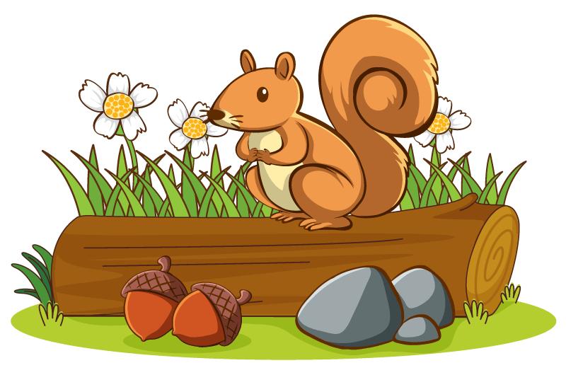 树桩上可爱的松鼠矢量素材(EPS/免扣PNG)
