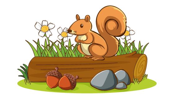 树桩上可爱的松鼠矢量素材(EPS/PNG)