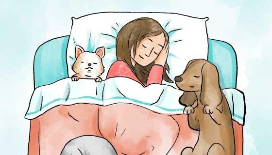 和宠物一起睡觉的女子矢量素材(AI/EPS)