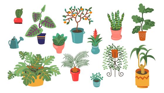 各种各样的盆栽矢量素材(EPS/PNG)