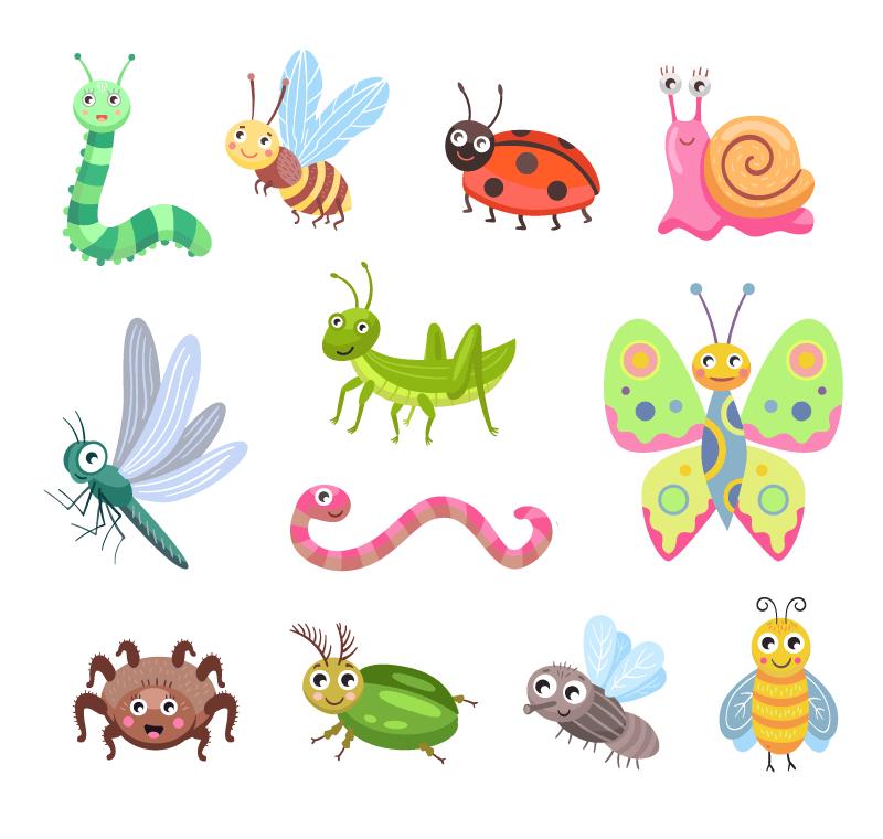 可爱的昆虫矢量素材(EPS/免扣PNG)