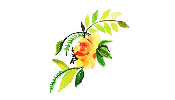 水彩画花朵矢量素材(EPS/PNG)