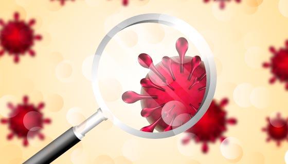 显微镜下的冠状病毒矢量素材(AI/EPS)