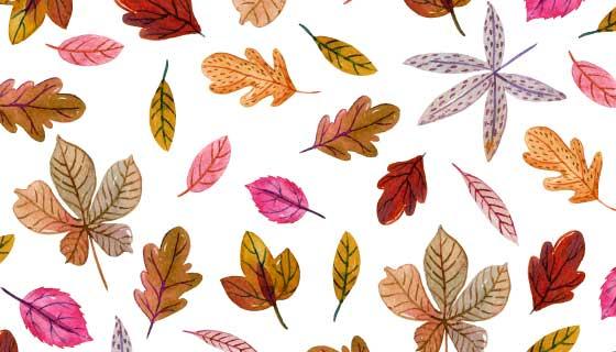 各种各样的秋叶矢量素材(AI/EPS/PNG)