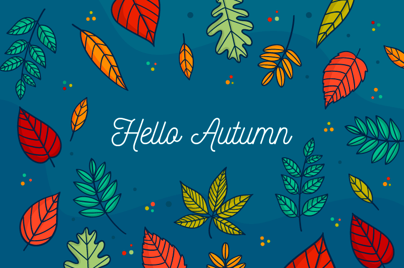 各种各样的叶子秋天背景矢量素材(AI/EPS)