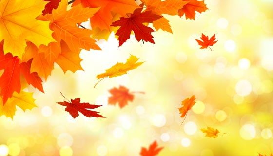 金黄色的叶子秋天背景矢量素材(AI/EPS)