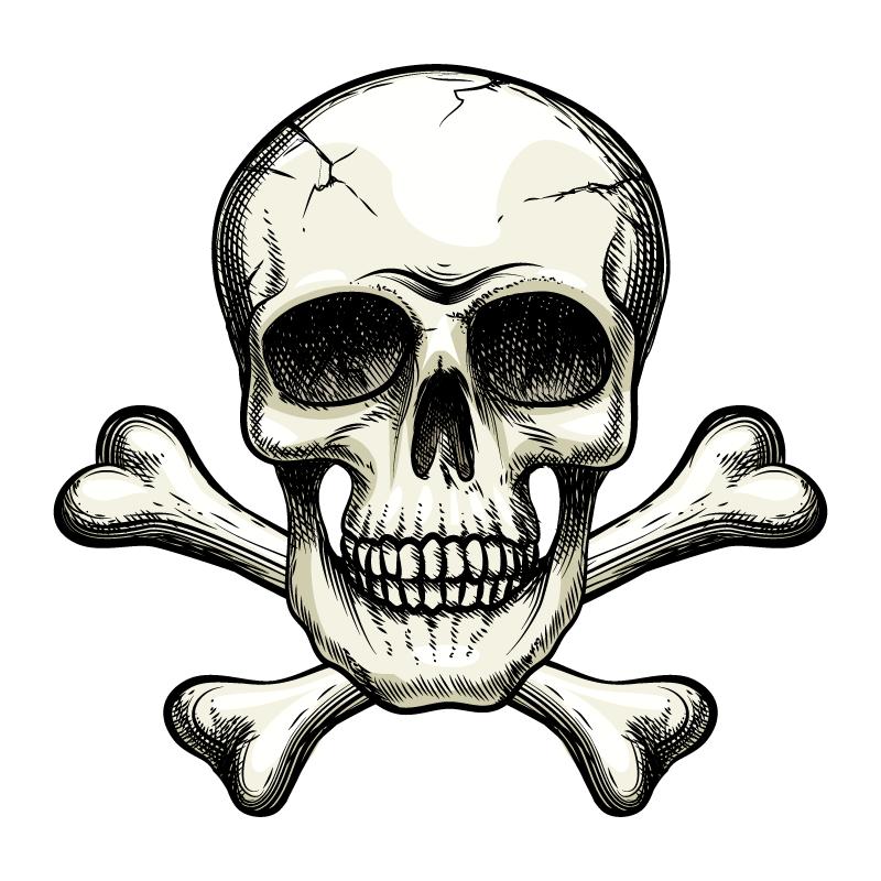 恐怖的骷髅头矢量素材(EPS/免扣PNG)