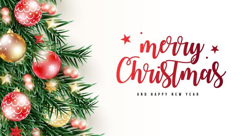 圣诞树枝和圣诞球设计圣诞节矢量素材(EPS)
