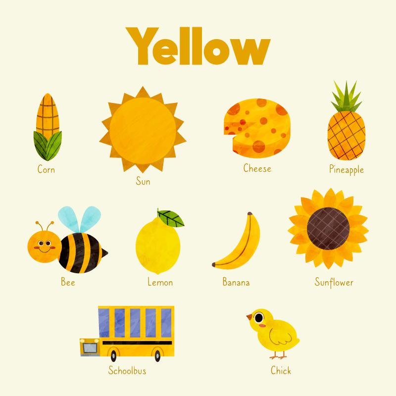 黄色物体英语词汇矢量素材(AI/EPS/免扣PNG)