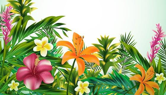 鲜艳的热带花卉矢量素材(EPS/AI)