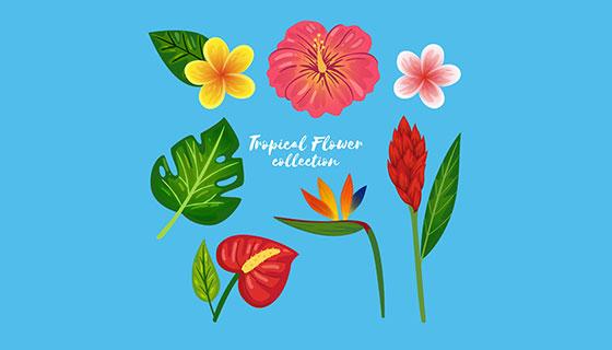 热带花卉矢量素材(EPS/AI)