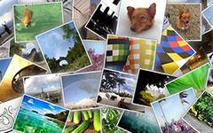 hotopile JS – jQuery照片堆叠效果插件